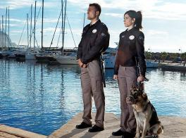 Especialidades específicas de Vigilantes de Seguridad