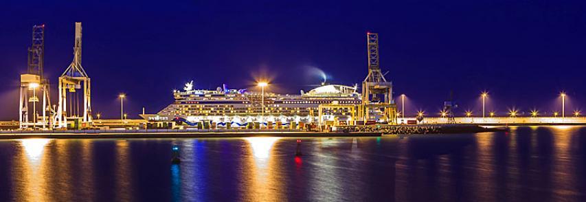 Especialidad vigilante de seguridad: Vigilancia en puertos.